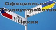 Чешская рабочая виза с трудоустройством